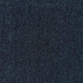 Aussie_Bahar_Persian_Blue
